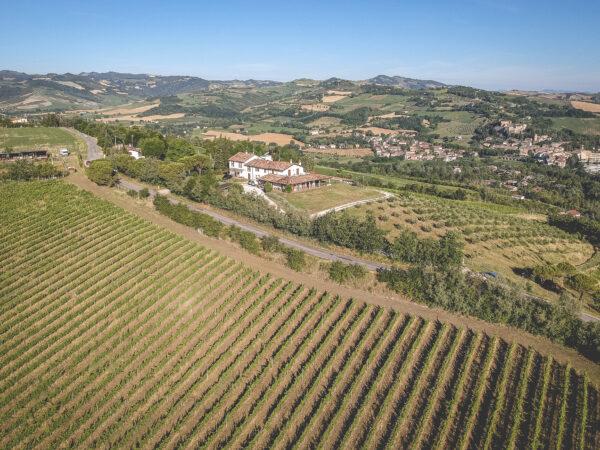 Azienda Agricola Fiorentini Vini